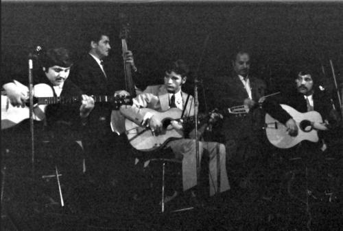 Häns'che Weiss 1972